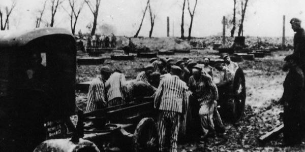 Obóz koncentracyjny w oglądzie socjologicznym. Elity więźniarksie