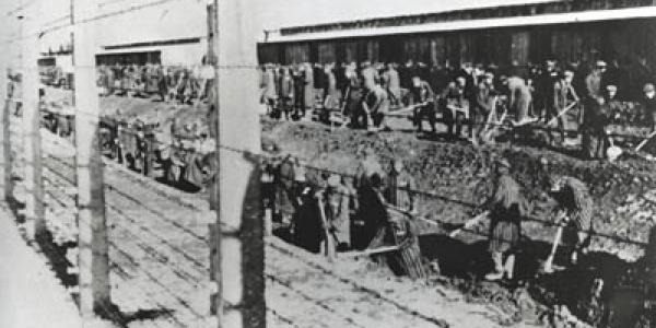 Obóz koncentracyjny w oglądzie socjologicznym. Elity więźniarskie