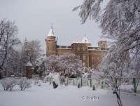 Szczytna zamek